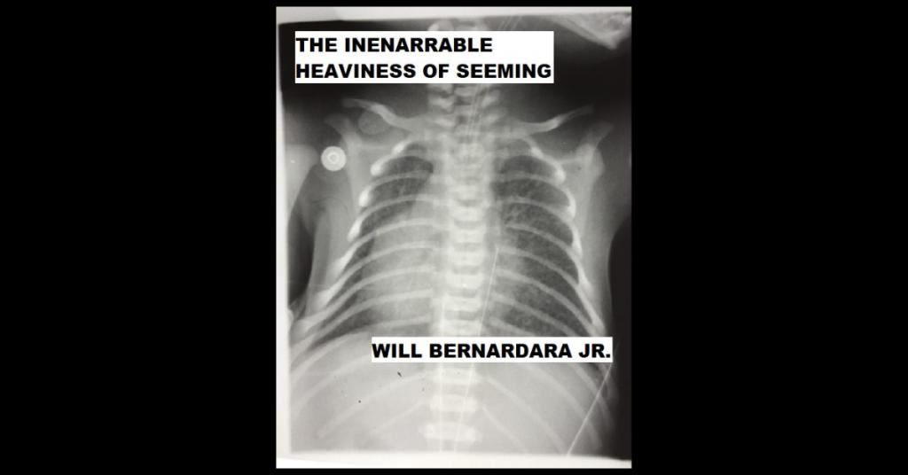 THE INENARRABLE HEAVINESS OF SEEMING by Will Bernardara Jr.