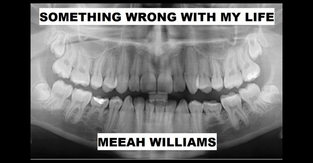 SOMETHING WRONG WITH MY LIFE by Meeah Williams