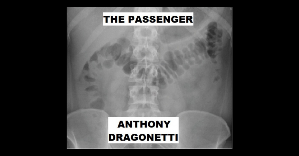 THE PASSENGER by Anthony Dragonetti