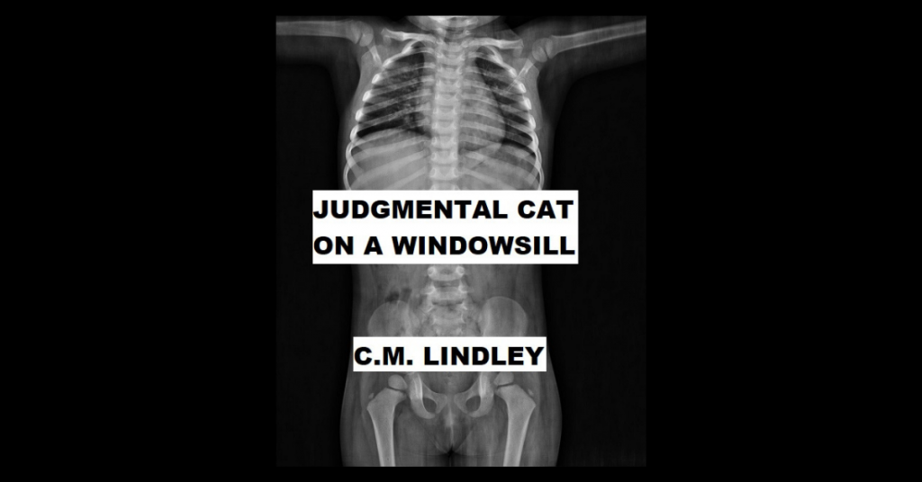 JUDGMENTAL CAT ON A WINDOWSILL by C. M. Lindley