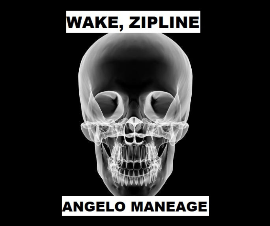 WAKE, ZIPLINE by Angelo Maneage