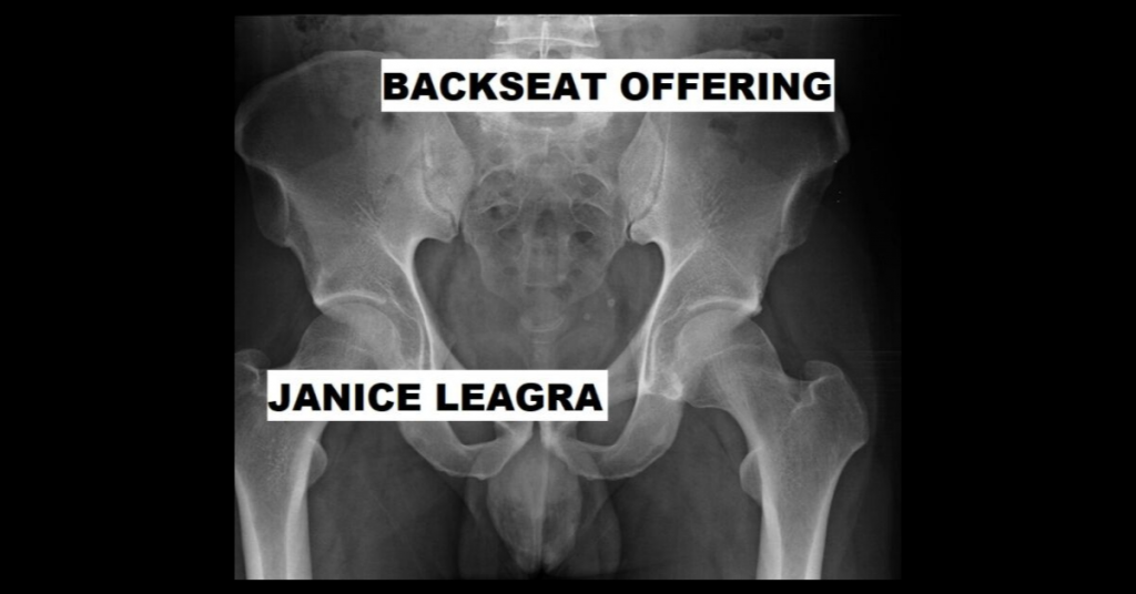 BACKSEAT OFFERING by Janice Leagra
