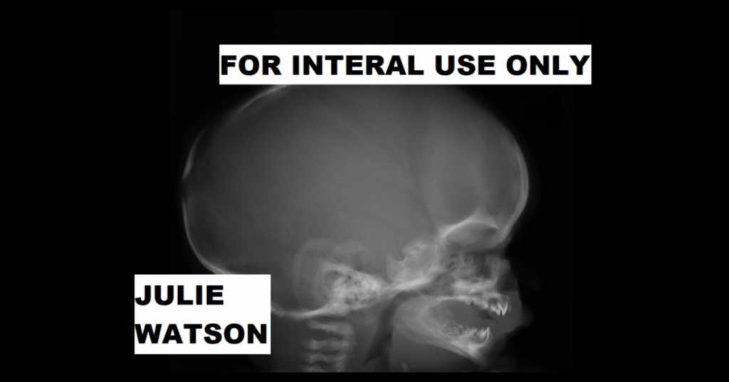 FOR INTERNAL USE ONLY by Julie Watson