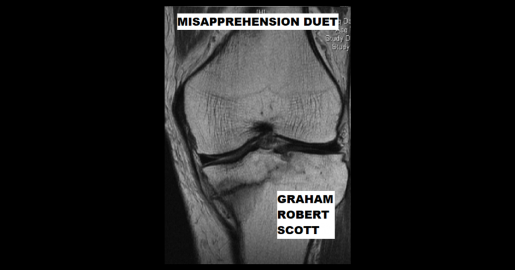 MISAPPREHENSION DUET by Graham Robert Scott