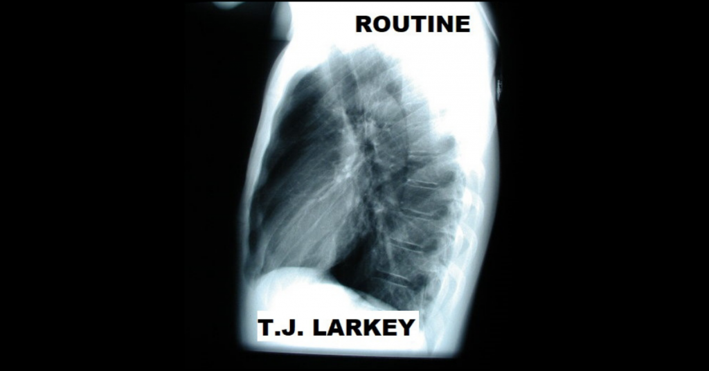 ROUTINE by T.J. Larkey