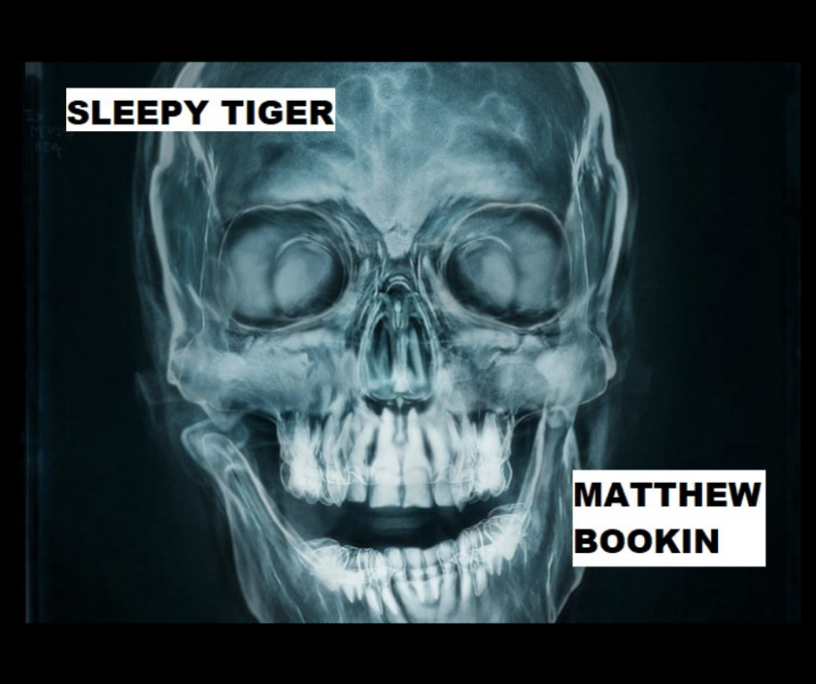 SLEEPY TIGER by Matthew Bookin