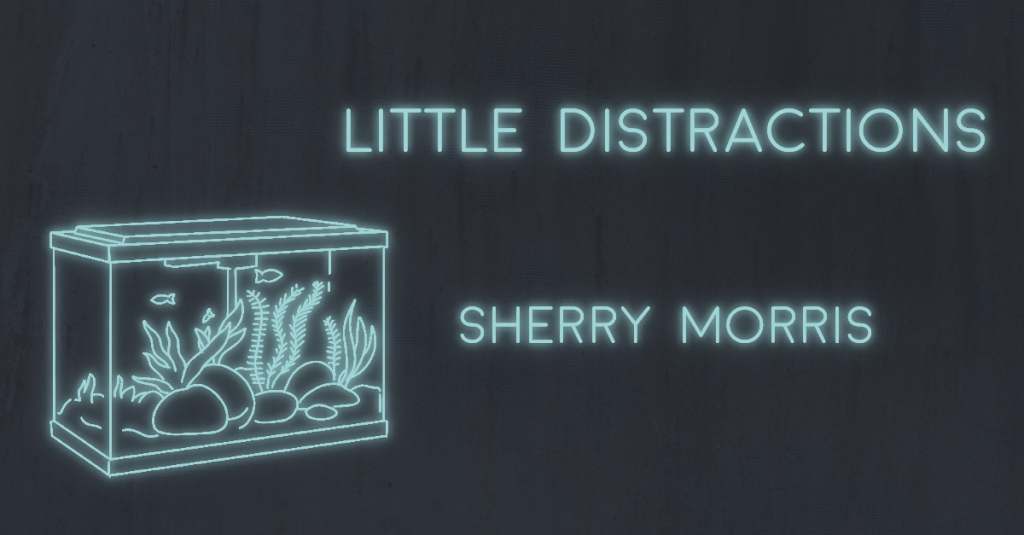 LITTLE DISTRACTIONS by Sherry Morris