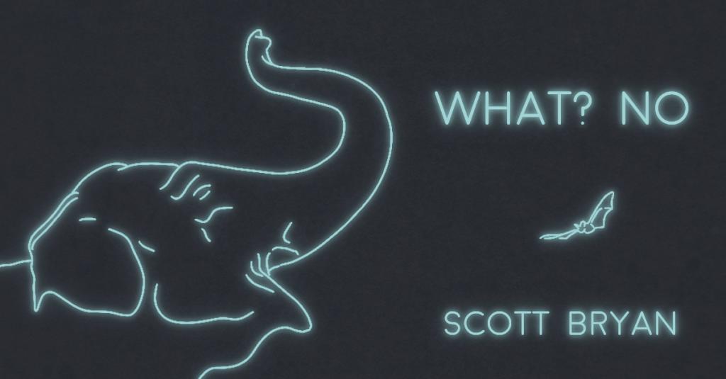 """WHAT? NO."" by Scott Bryan"