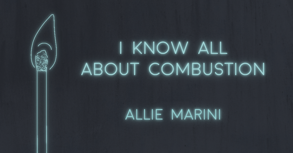I KNOW ALL ABOUT COMBUSTION by Allie Marini