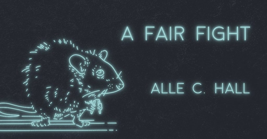 A FAIR FIGHT by Alle C. Hall