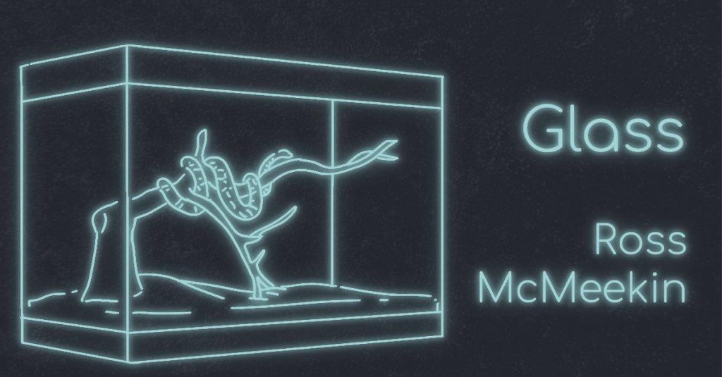 GLASS by Ross McMeekin