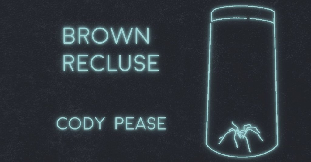BROWN RECLUSE by Cody Pease