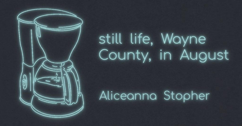 STILL LIFE, WAYNE COUNTY, IN AUGUST by Aliceanna Stopher