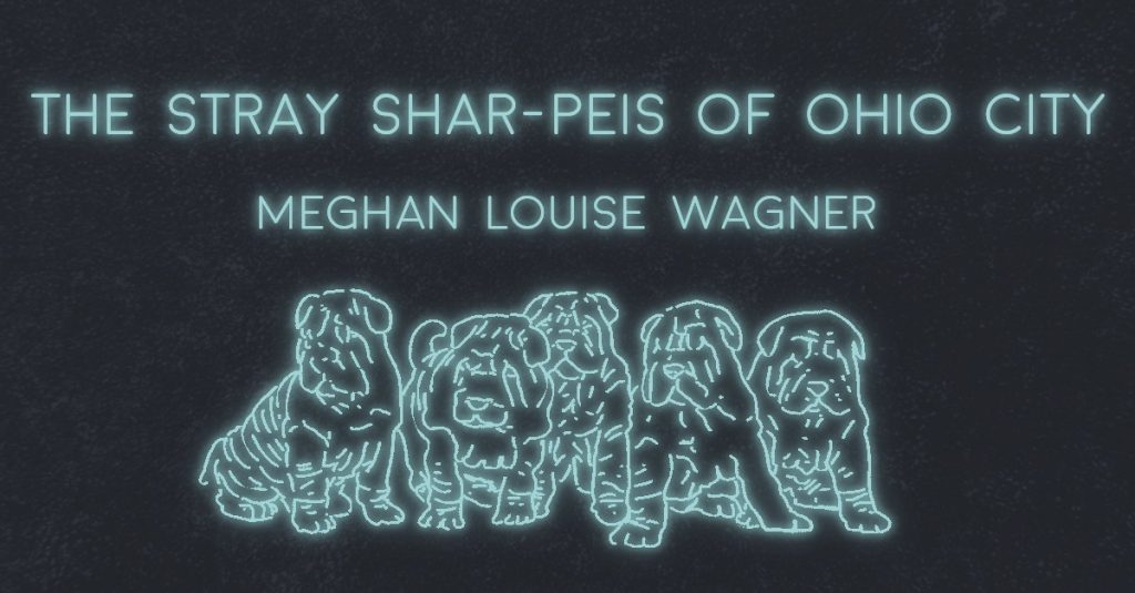 THE STRAY SHAR-PEIS OF OHIO CITY by Meghan Louise Wagner