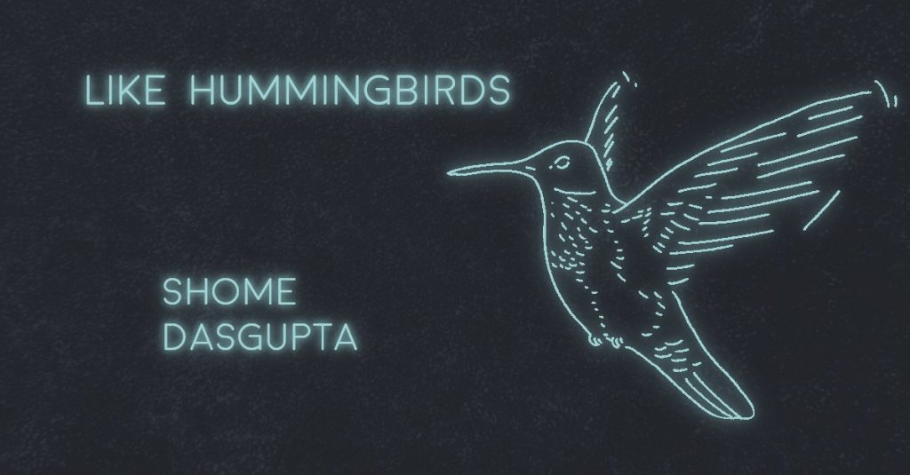 LIKE HUMMINGBIRDS by Shome Dasgupta