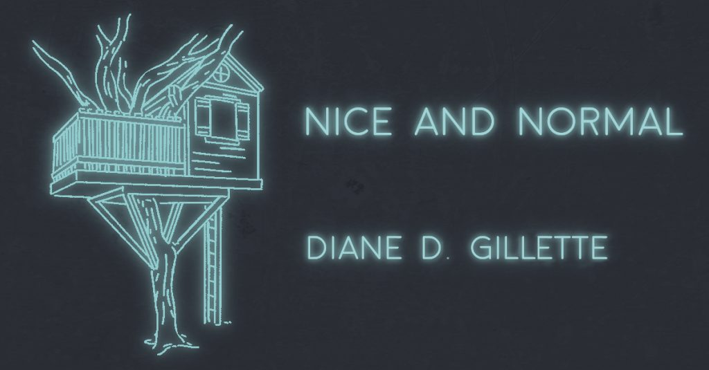 NICE AND NORMAL by Diane D. Gillette