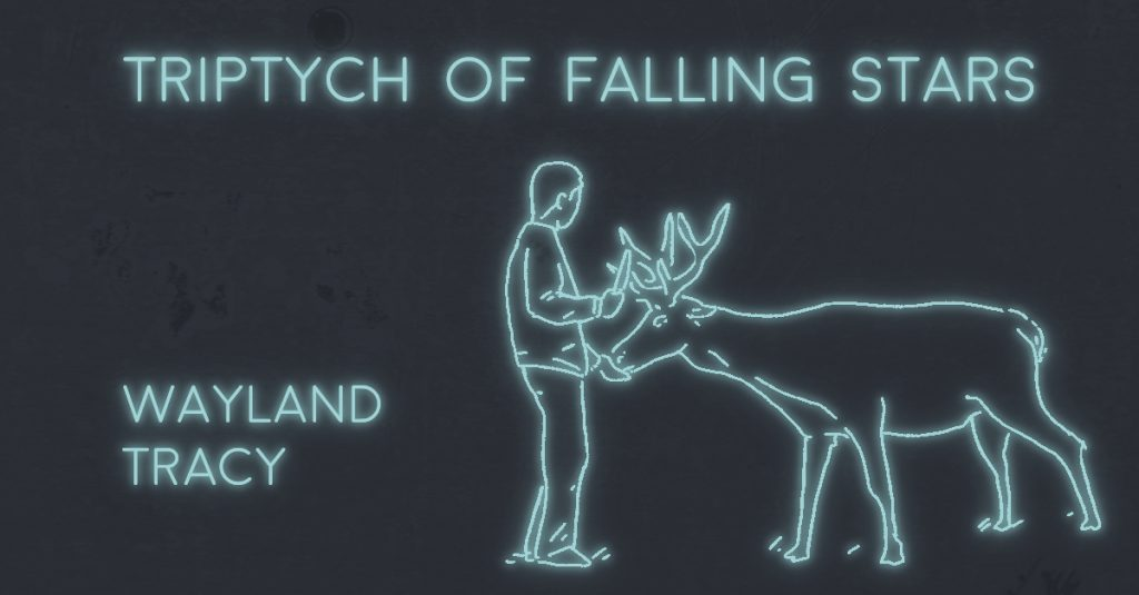 TRIPTYCH OF FALLING STARS by Wayland Tracy
