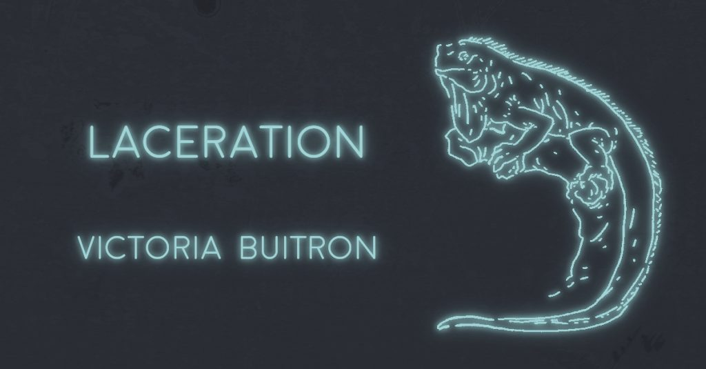 LACERATION by Victoria Buitron