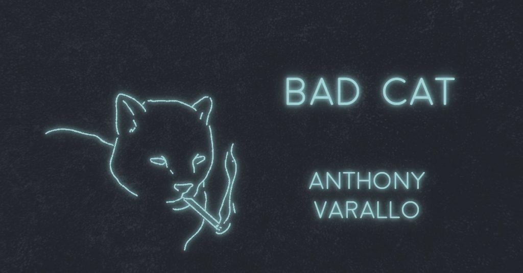 BAD CAT by Anthony Varallo