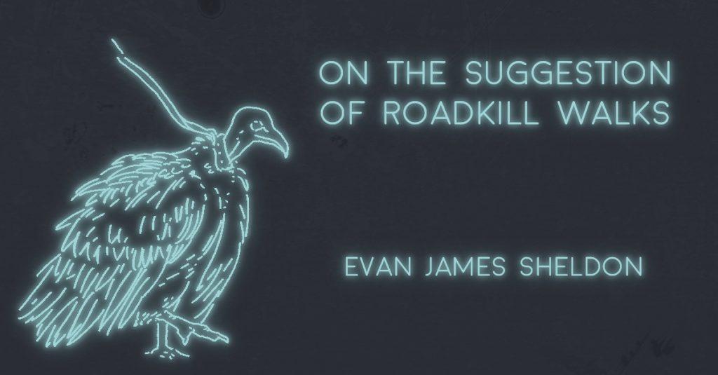 ON THE SUGGESTION OF ROADKILL WALKS by Evan James Sheldon