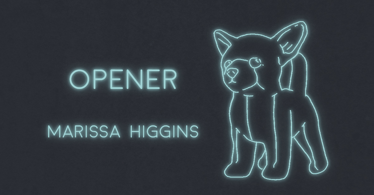THE OPENER by Marissa Higgins
