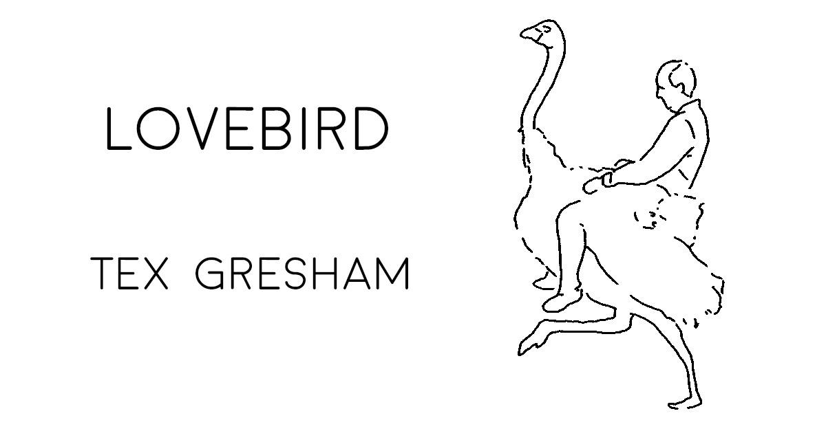 LOVEBIRD by Tex Gresham