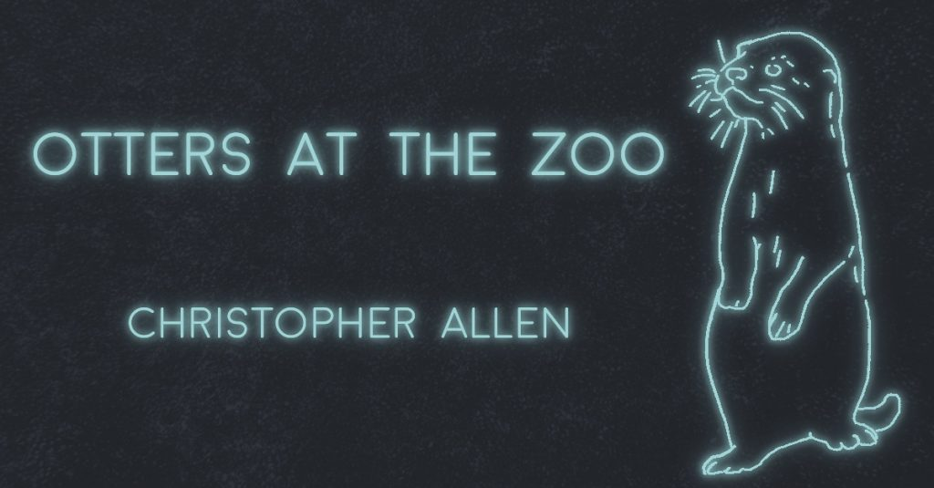 OTTERS AT THE ZOO by Christopher Allen